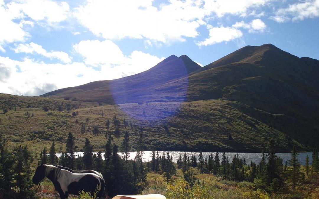 Horseback Riding in the Yukon