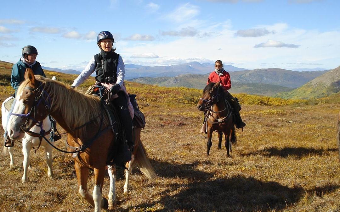 Group Enjoying Horseback Riding